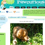 The Paw Curious Blog