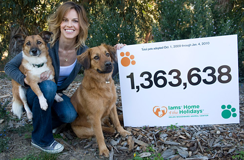 Hilary Swank with her adopted rescue dogs, Karoo and Rumi